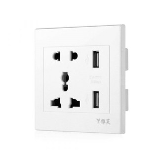 Dual USB 5V/2.1A Charger Ports + Universal 10A Outlet Panel